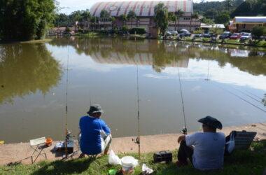 Lago Grande reabre neste sábado e recebe 400 quilos de tilápia